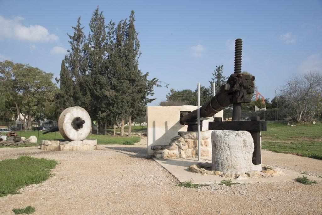 הגן הארכיאולוגי כפר סבא