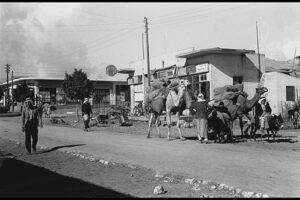 תמונה 1 - סוחרים ערבים עם גמל על רחוב ויצמן
