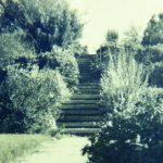צילום היסטורי של גן הברון מנשה