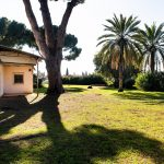 גן הברון מנשה כפר סבא. צילום עדי אדר