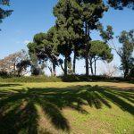 גן הברון מנשה בכפר סבא, צילום: עדי אדר